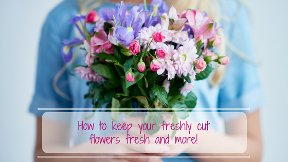 How to keep your freshly cut flowers fresh and more!